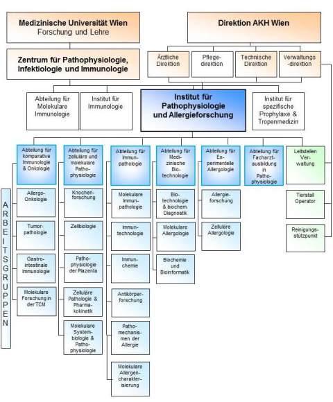 Analyse internationaler Beziehungen: