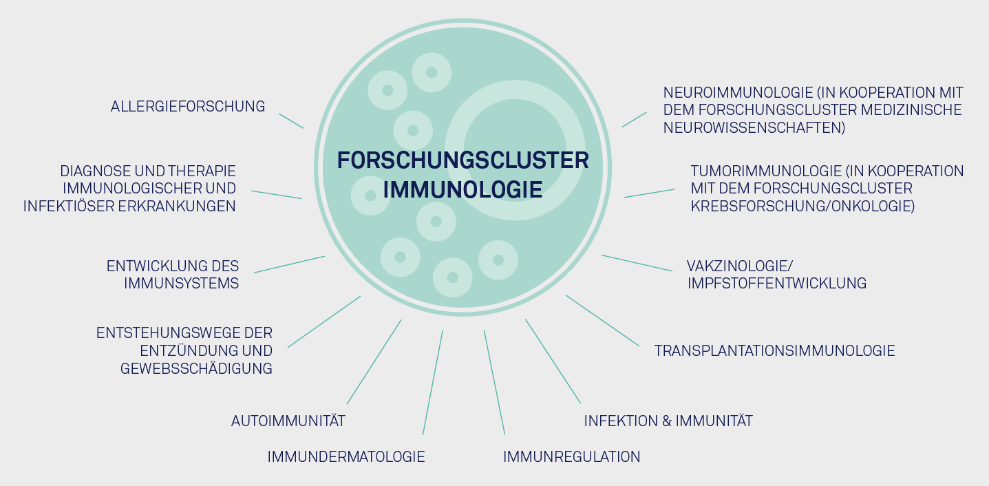 Research cluster immunology